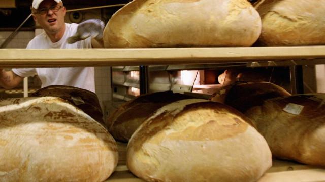 Nove padarias com atividade suspensa por falta de higiene