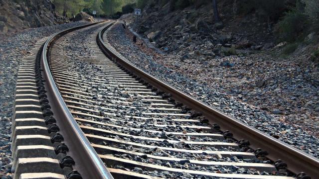 Descarrilamento de comboio interrompe troço da Linha do Norte