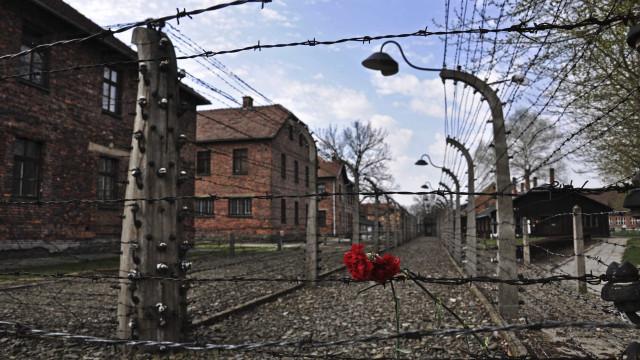 Turistas roubam tijolos do campo de concentração de Auschwitz