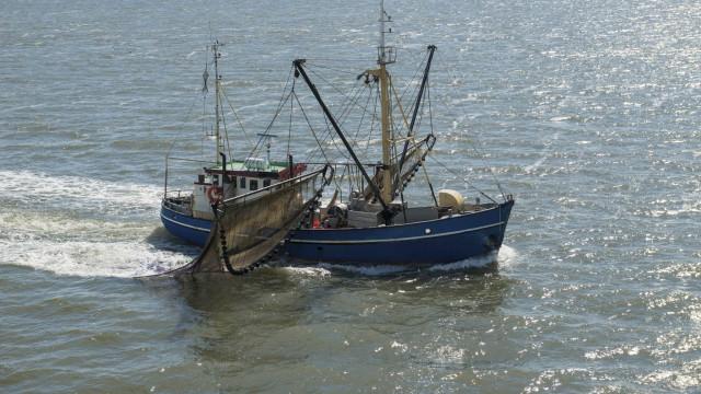 Pescador morre no mar após cair de traineira ao largo de Aveiro