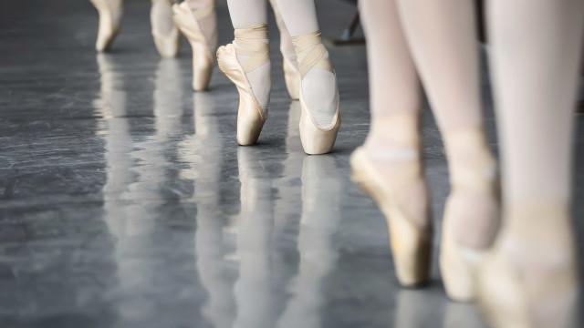 Companhia Paulo Ribeiro junta disciplinas curriculares e dança