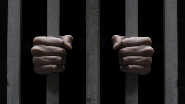 Detido para cumprir pena de prisão por apedrejar gato e agredir polícias