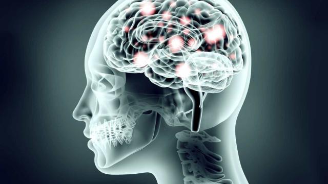 Cérebro tem 'mapa' que guia execução de movimentos como correr ou sentar