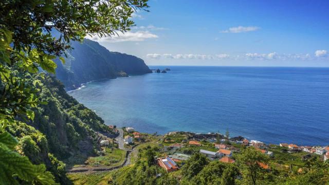 Capitania do Funchal reboca cetáceo de grandes dimensões para alto mar