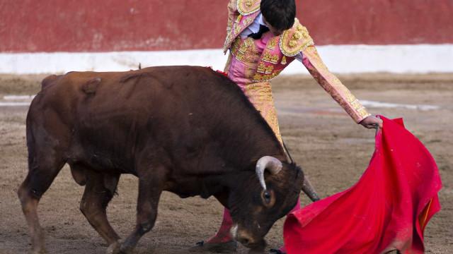 Câmara de Alcochete apresenta moção de protesto em defesa da tauromaquia