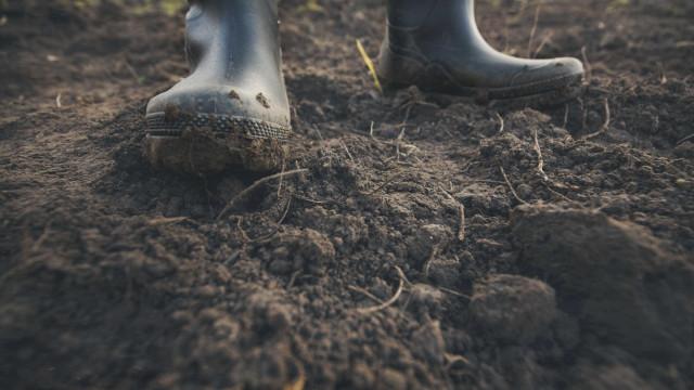 Governo diz que evita cortes na PAC mas agricultores estão preocupados