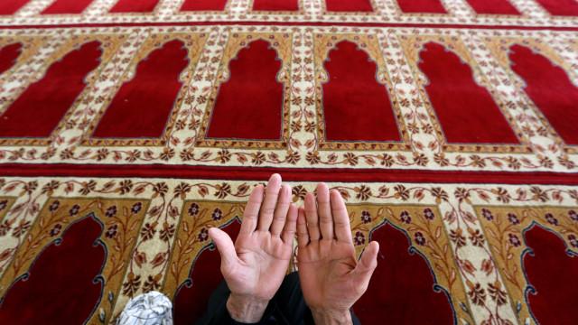 Islamização ibérica desvendada no Campo Arqueológico de Mértola
