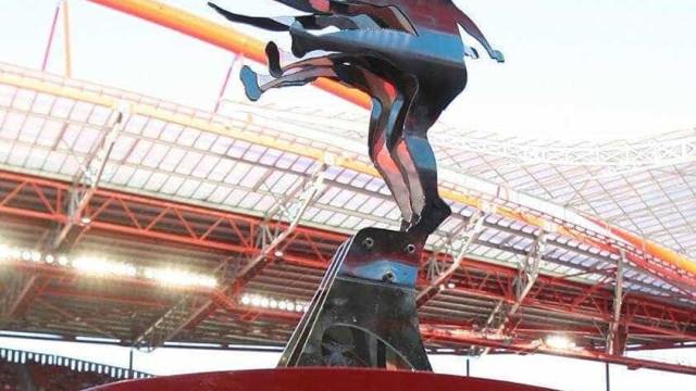 Eusébio Cup: Benfica está perto de arranjar adversário... para outubro