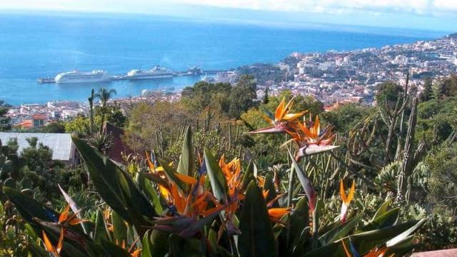 Investimento de 1,2 milhões em ribeira do Funchal para garantir segurança