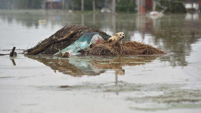Pelo menos 21 mortos em dois dias de inundações no Iraque