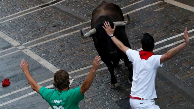 Festas de Barrancos com tradicionais touros de morte começam terça-feira