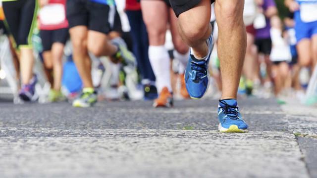 Fez maratona com um cachorro perdido ao colo. No final, houve prémio