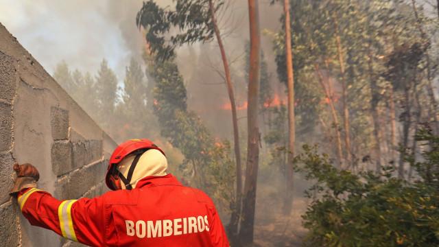 Fogo em fase de resolução no Sardoal, Santarém