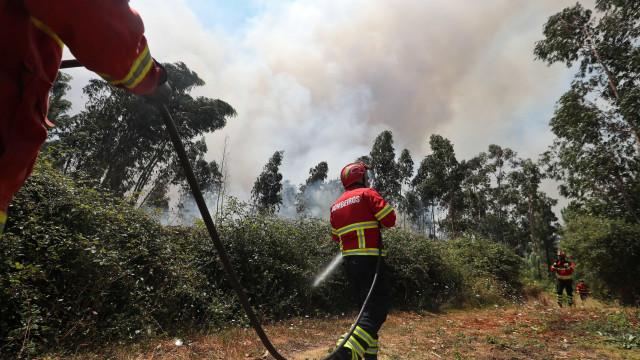 Incêndio em Penacova, reforços destacados para o local