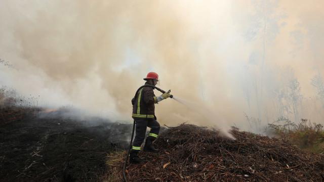 Fogo agrícola em área de pasto no concelho de Avis