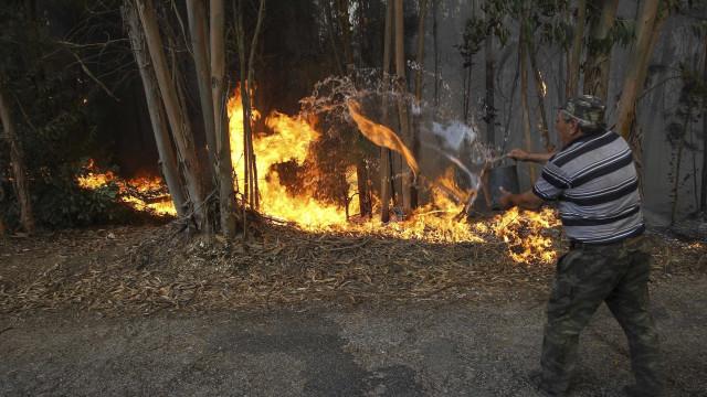 Homem morre carbonizado em Mação devido a queimada descontrolada