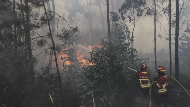 Incêndio lavra em Belmonte mas sem perigo para populações