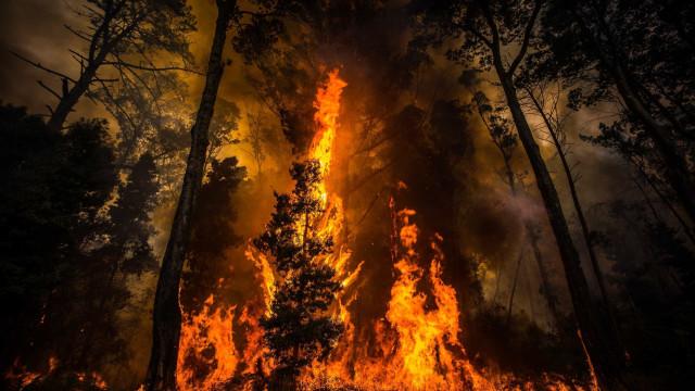 Bombeiros de Pampilhosa da Serra fazem pedido de ajuda urgente