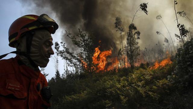 """Santarém: Incêndio """"ativo com muitas projeções"""", reforços a caminho"""