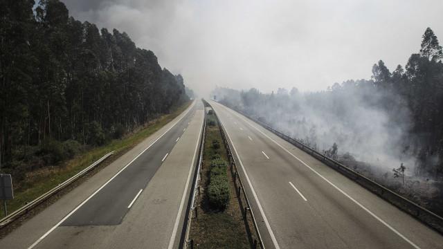 Proteção Civil registou hoje cem fogos de pequena dimensão