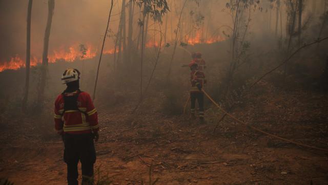 Meios portugueses em combate a fogo em Espanha