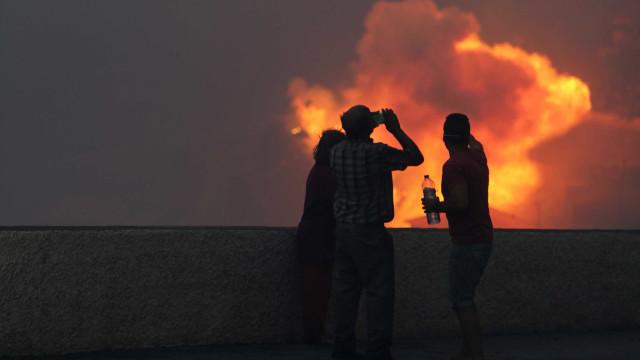 Incêndios: PAN quer penas maiores e investigação prioritária