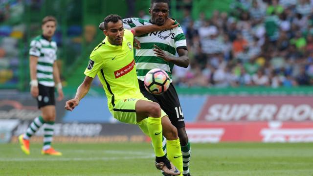 William Carvalho pode sair, mas só depois do playoff da Champions
