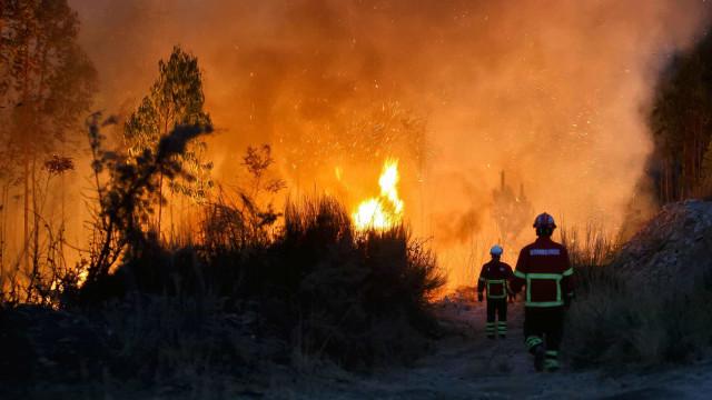 Três meios aéreos solicitados para combater fogo em Sintra-Cascais