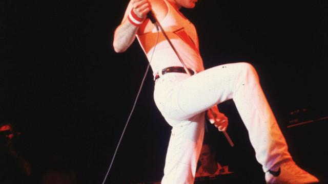 Freddie Mercury pressionou amigo para assumir homossexualidade