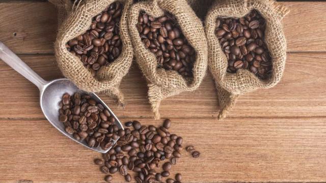 Um bom café não é um 'bicho de sete cabeças'. Quer aprender a fazê-lo?
