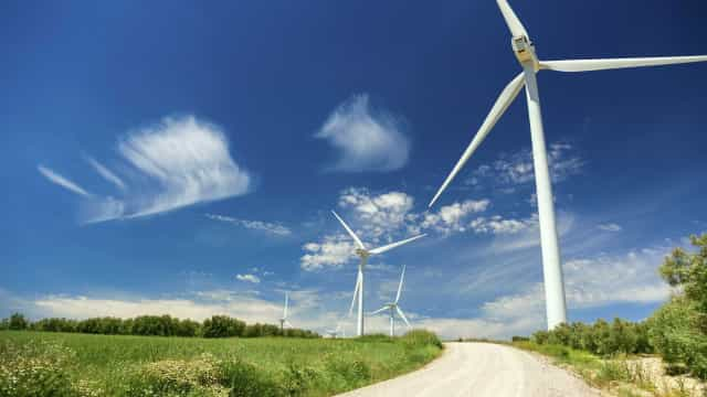 """Governo quer """"maior consenso possível"""" em torno de parque eólico em Viana"""