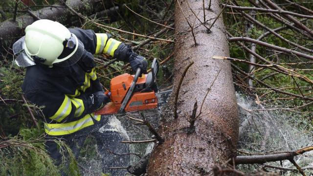 Quatro sapadores florestais feridos em acidente em Boticas