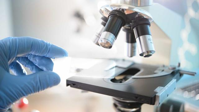 Despesa em investigação cresceu mais 113,3 milhões de euros face a 2015