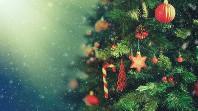 Árvore de Natal incendiou-se mas cão deu alerta e salvou família