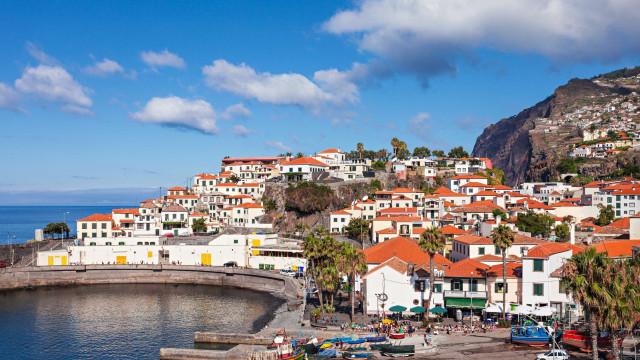 """Compromisso da Madeira com a defesa da floresta é """"total"""""""