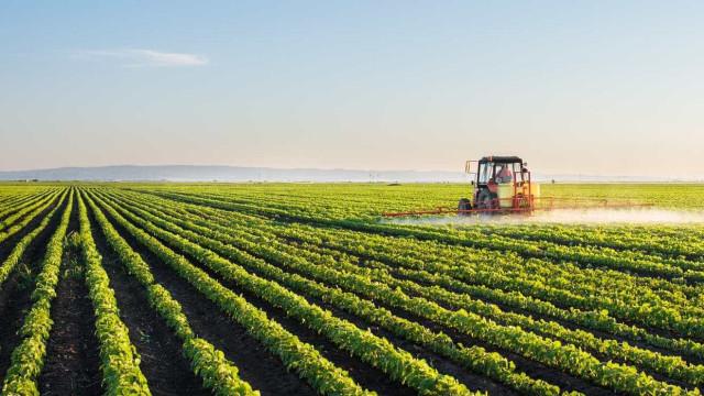 Ministério compromete-se a pagar hoje 51 milhões de euros a agricultores