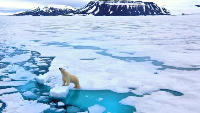 Muitas das terríveis consequências do aquecimento global podem evitar-se