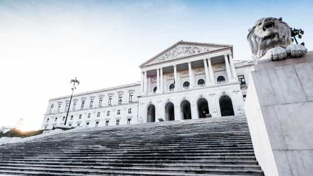 Parlamento discute quinta-feira três projetos-lei sobre animais de circo