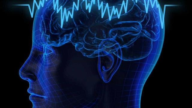 Flexibilidade cerebral poderá ser a base da inteligência humana