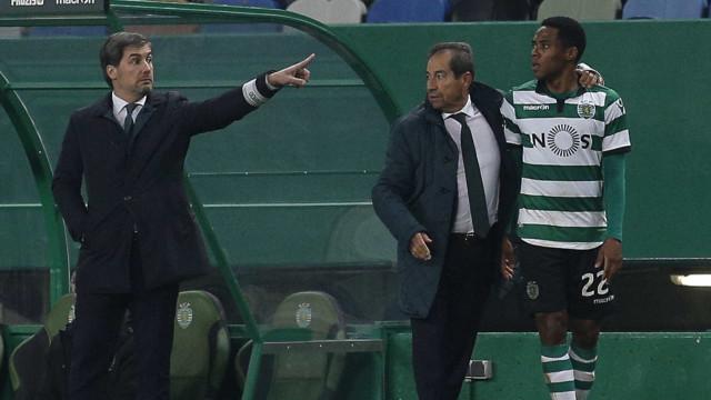 """Octávio contra-ataca: """"Bruno de Carvalho não é um leão, é um gatinho"""""""