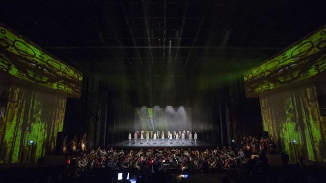 'O Lago dos Cisnes' regressa ao Teatro Camões a partir de sexta-feira