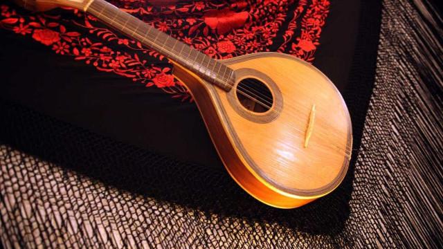 Francisco Salvação Barreto diz que só faz sentido cantar o que sente