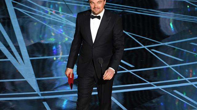 Esteticista viajou 12 mil km para arranjar sobrancelhas a DiCaprio