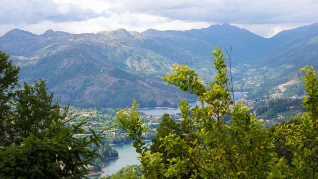Parque Peneda Gerês inicia campanha nacional de reflorestação