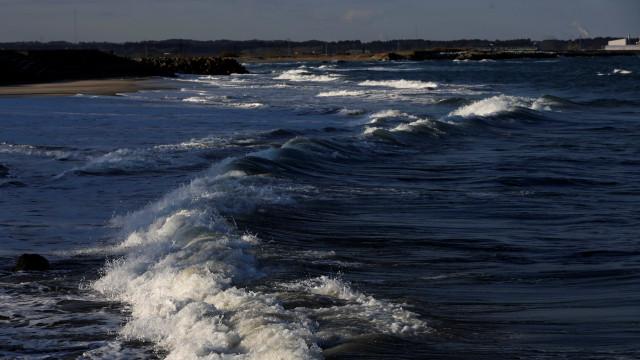 Programa de monitorização da costa com primeiros resultados em junho