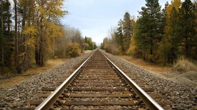 Mulher colhida por comboio. Linha férrea do norte interrompida