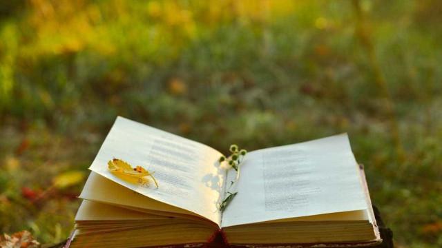 Poeta Carlos Drummond de Andrade homenageado 30 anos após a morte