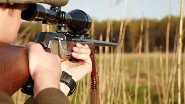 Caçador atingido mortalmente por arma de fogo em Celorico de Basto