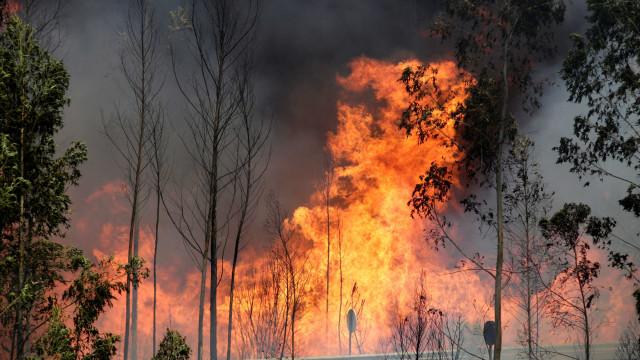 Fogo na Guarda sofreu reativação. Mais de 170 bombeiros no terreno