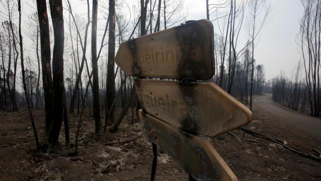 Época crítica termina com maior área ardida da última década e 64 mortos